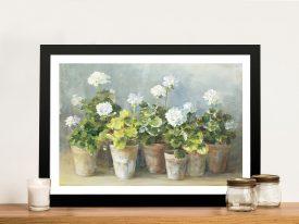 White Geraniums By Danhui Nai Gift Ideas