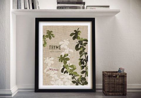 Culinary Art - Thyme Canvas Prints