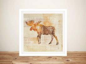 Moose Study By Studio Moussea Best Prints Online