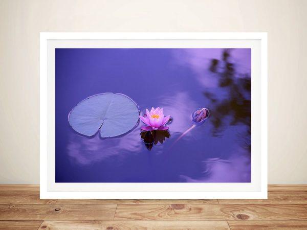 Purple Lotus Canvas Photo Prints