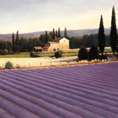 Lavender Fields ii By James Wiens Landscape Canvas Wall Prints