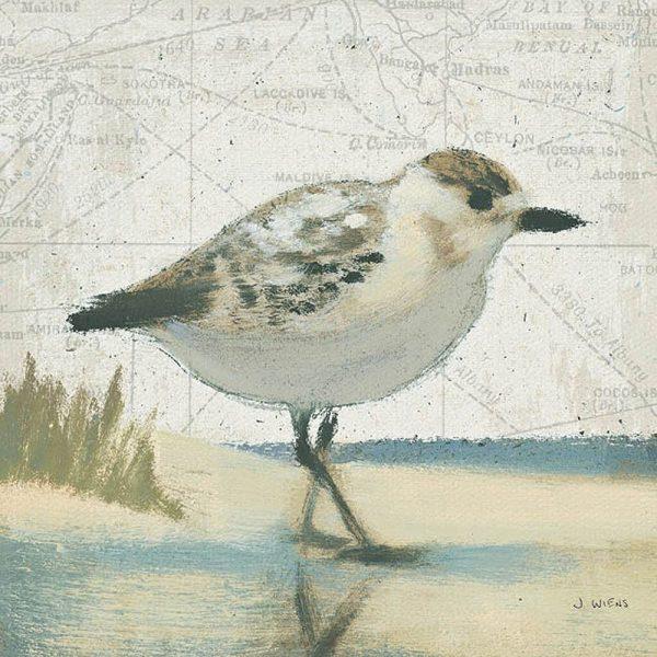 Buy James Wiens Beach Bird I Wall Art Prints Online