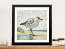 Beach Bird I By James Wiens Gift Ideas