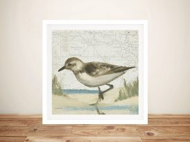 Beach Bird IV By James Wiens Wall Art