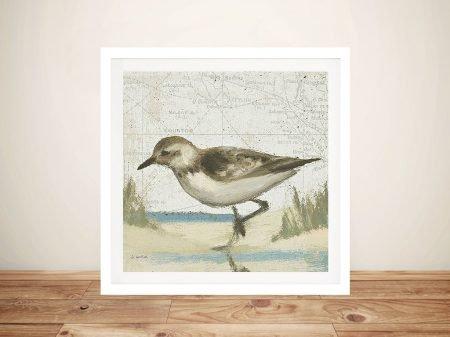Beach Bird IV By James Wiens Wall Art