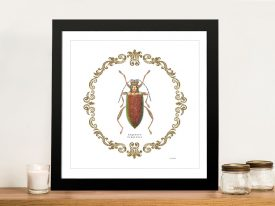 Adorning Coleoptera VI Canvas Art