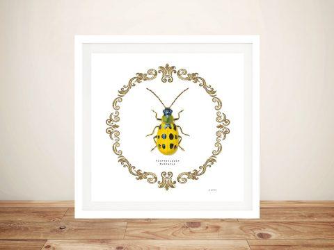 Adorning Coleoptera Vll Canvas Print