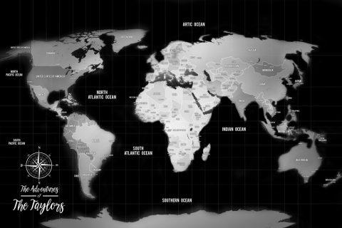 Pins Board Silver World Travel Map Canvas print
