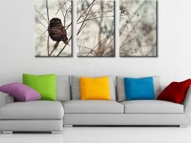Look At Me! Triptych Wall Art