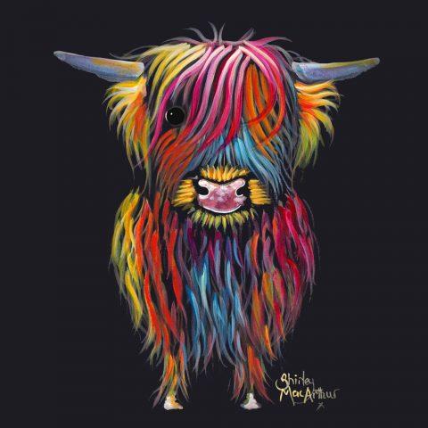 Braveheart A Highland Cow Print By Shirley MacArthur Online Australia