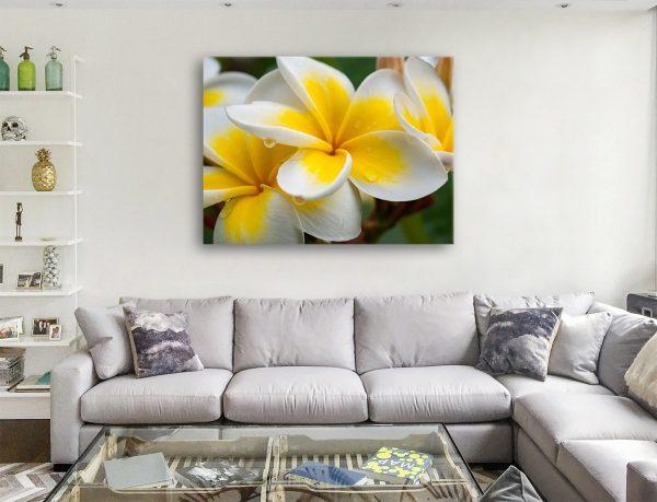 Cheap Artwork Yellow Frangipani II By Matt Day Australia