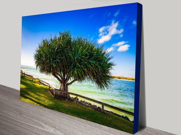 Caloundra Pandanus Australian Canvas Artwork