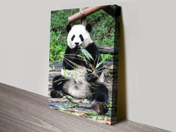Buy Cheap Giant Panda Canvas Wall Art Online