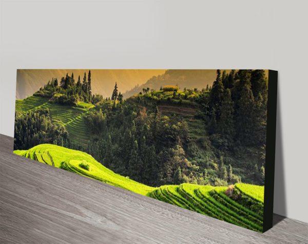 Buy Rice Terraces at Sunset Artwork AU