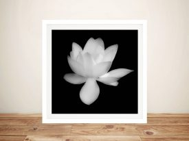 Wall Art Print Of A Lotus Flower