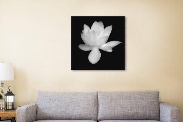 Lotus Flower Cheap Australian Wall Art