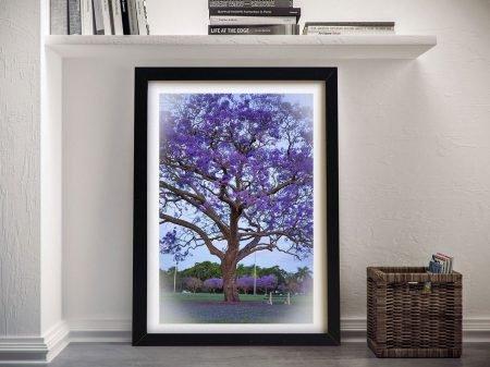 Brisbane Blossom Australian Wall Art