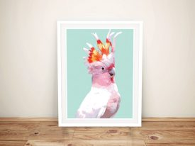 Buy This Pretty Flaming Galah Framed Print