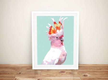 Buy This Pretty Flaming Galah Framed Print