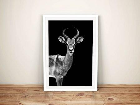 Buy A Print of an Antelope by Hugonnard