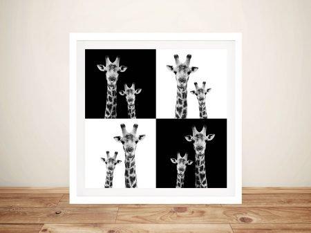 Buy Canvas Wall Art Print of Two Giraffes