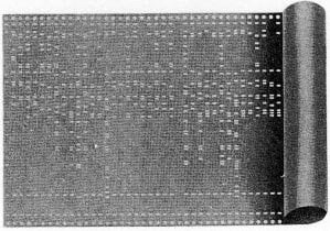IBM SSEC punched tape