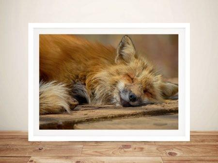 Buy Sleepy Head Smiling Fox Framed Wall Art