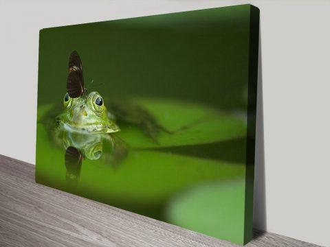Buy Frog Wildlife Wall Art Unique Gift Ideas AU