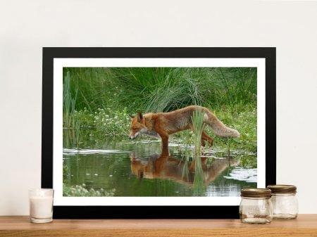 Buy Fox in the Grass Canvas Wildlife Print