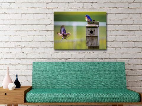 Wild Bird Canvas Prints Unique Gift Ideas Online