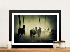 Horses in the Fog Wild Animal Framed Prints