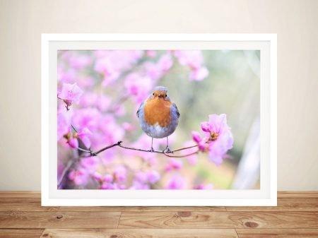 Robin in Bloom Beautiful Animal Canvas Artwork