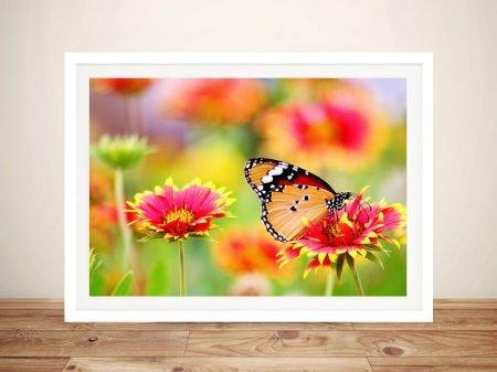 Butterfly & Blooms Pretty Framed Canvas Art
