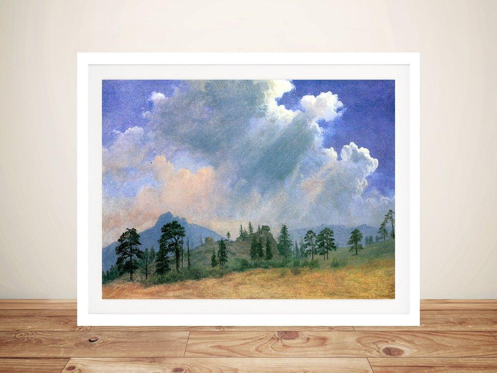 Buy Fir Trees & Storm Clouds Framed Artwork