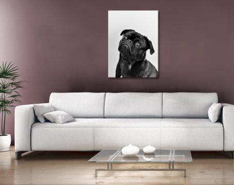 Buy Unique Dog Artwork Great Gift Ideas Australia