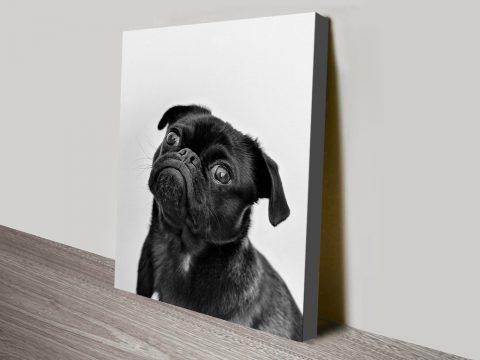 Buy Cheap Canvas Wall Art Featuring a Pug AU
