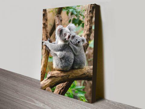 Buy Cute Koala Bear Canvas Art Cheap Online