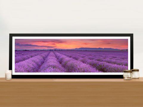 Buy Lavender Fields Cheap Panoramic Art AU