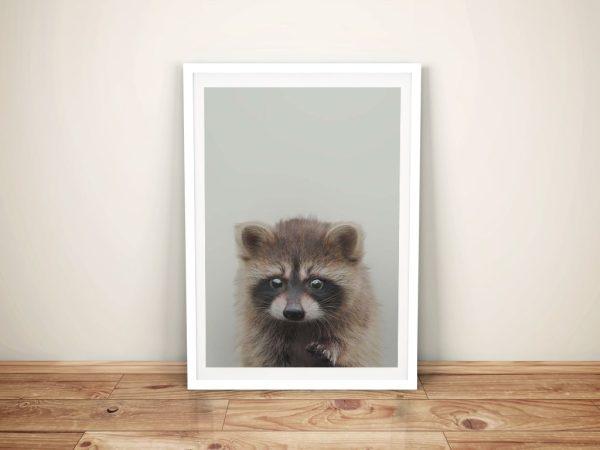 Buy an Adorable Baby Raccoon Canvas Print