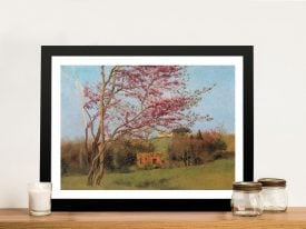 Buy a Canvas Print of Blossoming Red Almond