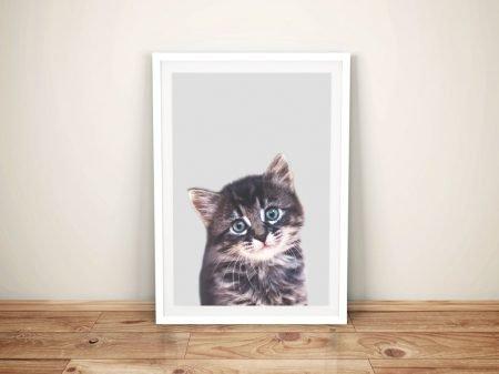 Buy a Ready to Hang Cute Kitten Portrait Print
