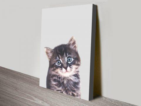Buy Adorable Kitten Canvas Art Gift Ideas AU