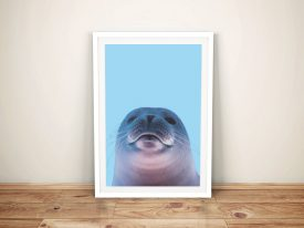 Buy a Seal Portrait Framed Kids Wall Art