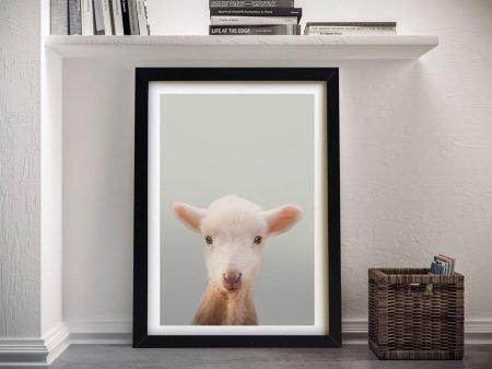 Buy an Enchanting Baby Sheep Framed Print