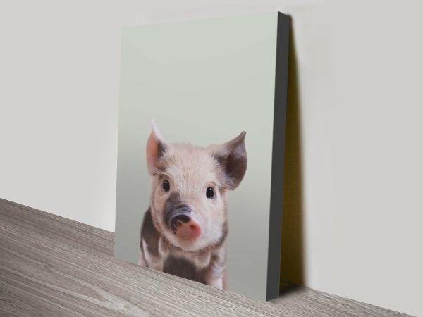 Buy Gorgeous Animal Babies Framed Prints AU