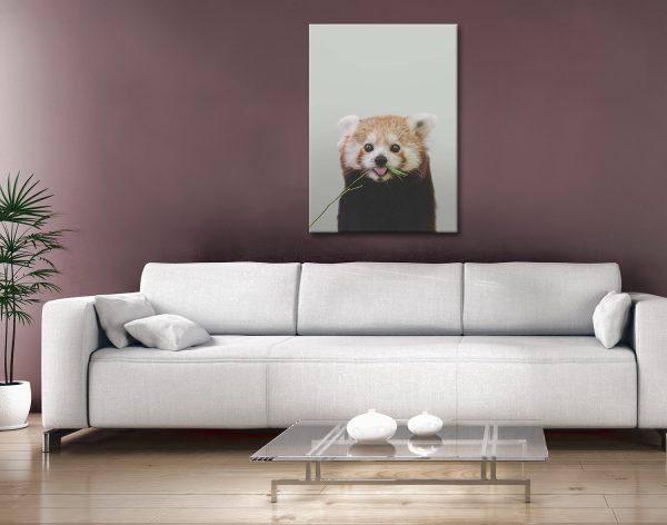 Buy Affordable Baby Panda Prints Online