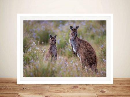 Buy Inquisitive Kangaroos Framed Artwork