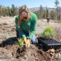 Blue Horizon Prints Partners with One Tree Planted