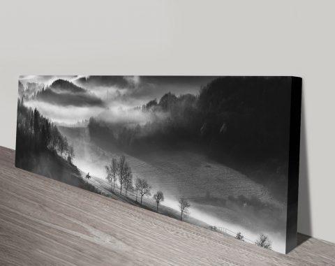 Morning Ride Black & WhitePanoramic Wall Art