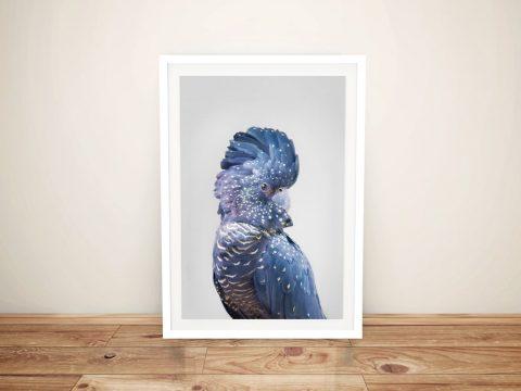 Buy a Beautiful Portrait Print of a Blue Cockatoo